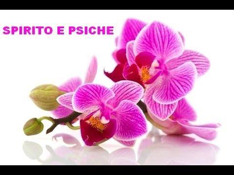 SPIRITO E PSICHE